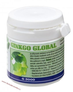 Ginkgo Global 90 tablet - 27g
